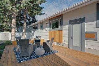 Photo 48: 10815 Maplecreek Drive SE in Calgary: Maple Ridge Detached for sale : MLS®# A1038611