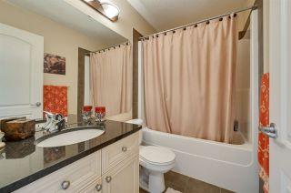 Photo 34: 20204 48 Avenue in Edmonton: Zone 58 House for sale : MLS®# E4236022