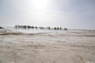 Photo 10: Horsnall Acreage in Moose Jaw: Lot/Land for sale (Moose Jaw Rm No. 161)  : MLS®# SK844416