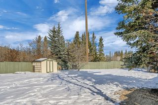 Photo 30: 123 Edgewood Drive NW in Calgary: Edgemont Detached for sale : MLS®# A1070079