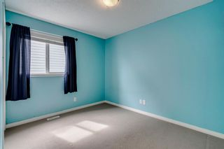 Photo 31: 1571 COPPERFIELD Boulevard SE in Calgary: Copperfield Detached for sale : MLS®# A1107569