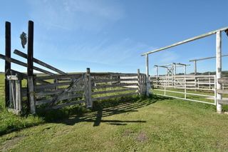 Photo 34: 33169 BIG HILL SPRINGS Road in Rural Rocky View County: Rural Rocky View MD House for sale : MLS®# C4110973