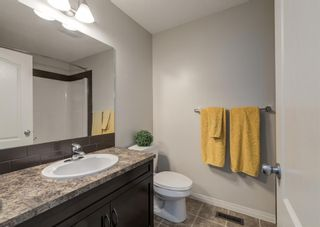 Photo 40: 189 COPPERPOND Road SE in Calgary: Copperfield Detached for sale : MLS®# A1091868