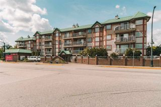 "Main Photo: 212 22661 LOUGHEED Highway in Maple Ridge: East Central Condo for sale in ""GOLDEN EARS GATE"" : MLS®# R2580205"