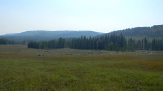 Photo 17: Corner of 178 Ave & 336 St W: Rural Foothills County Land for sale : MLS®# A1053038