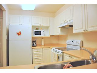 Photo 5: 302 3070 Guildford Way in Coquitlam: North Coquitlam Condo for sale : MLS®# V1126460