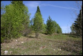 Photo 47: 21 6500 Southwest 15 Avenue in Salmon Arm: Panorama Ranch Vacant Land for sale : MLS®# 10230290