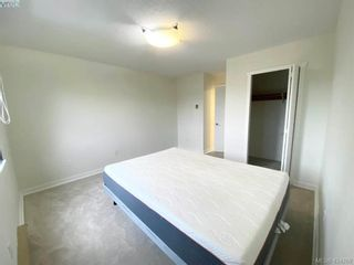 Photo 5: 402 1571 Mortimer St in VICTORIA: SE Cedar Hill Condo for sale (Saanich East)  : MLS®# 837902