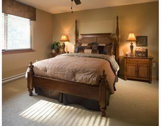 """Photo 6: 79 24185 106B Avenue in Maple Ridge: Albion 1/2 Duplex for sale in """"TRAILS EDGE"""" : MLS®# V812194"""