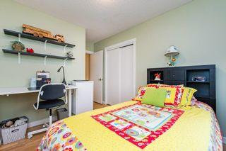 Photo 22: 3604 111A Street in Edmonton: Zone 16 House for sale : MLS®# E4255445