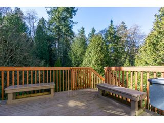 Photo 39: 7757 143 Street in Surrey: East Newton House for sale : MLS®# R2037057