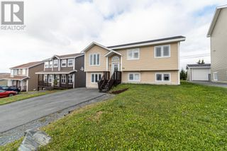Photo 41: 124 Mallow Drive in Paradise: House for sale : MLS®# 1237512