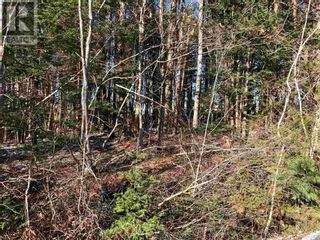 Photo 3: Lot Highway 103 in Oakhill: Vacant Land for sale : MLS®# 202125089