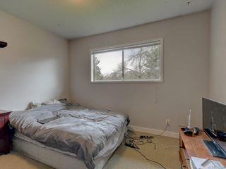 Photo 10: 1316 Lang St in Victoria: Vi Mayfair House for sale : MLS®# 842998