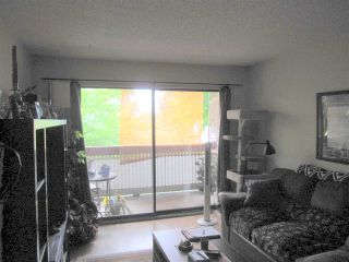 """Photo 7: 203 109 TENTH Street in New Westminster: Uptown NW Condo for sale in """"LANDGRO MANOR"""" : MLS®# R2181370"""