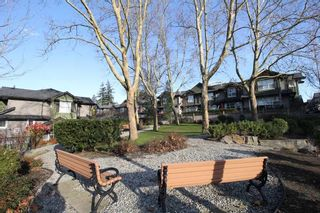 """Photo 15: 76 18199 70 Avenue in Surrey: Cloverdale BC Townhouse for sale in """"Augusta"""" (Cloverdale)  : MLS®# R2422353"""