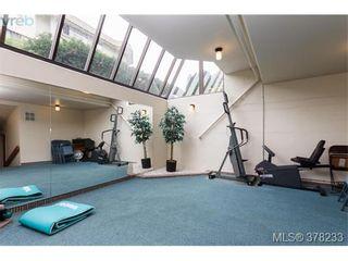 Photo 14: 104 420 Linden Ave in VICTORIA: Vi Fairfield West Condo for sale (Victoria)  : MLS®# 759474