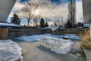 Photo 36: 1011 80 Avenue SW in Calgary: Chinook Park Detached for sale : MLS®# A1071031