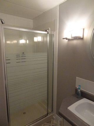 Photo 38: 42 54200 Rge Rd 265: Villeneuve House for sale : MLS®# E4240050