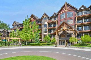 Photo 17: 270 8328 207A Street: Condo for sale in Langley: MLS®# R2551544