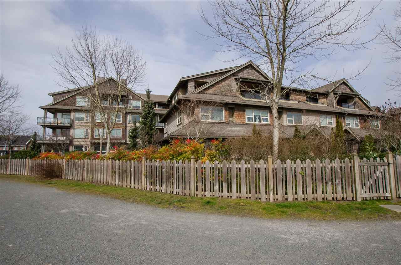 """Main Photo: 311 250 SALTER Street in New Westminster: Queensborough Condo for sale in """"PADDLERS LANDING"""" : MLS®# R2445205"""