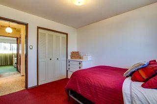 Photo 33: 10424 39A Avenue in Edmonton: Zone 16 House for sale : MLS®# E4264425