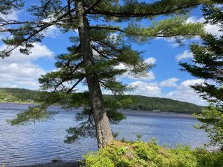 Photo 25: Lot 29 Anderson Drive in Sherbrooke: 303-Guysborough County Vacant Land for sale (Highland Region)  : MLS®# 202115631