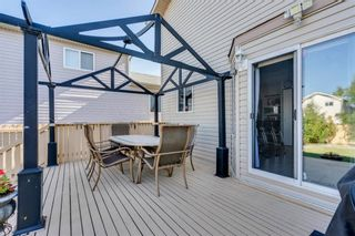 Photo 23: 283 Applestone Park SE in Calgary: Applewood Park Detached for sale : MLS®# A1087868