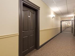 Photo 2: 206 5040 53 Street: Sylvan Lake Apartment for sale : MLS®# C4292241