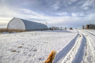 Photo 31: 234044 Twp Rd 272: Rural Wheatland County Detached for sale : MLS®# A1059890