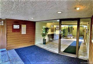 Photo 17: 305 3277 Glasgow Ave in : SE Quadra Condo for sale (Saanich East)  : MLS®# 882433