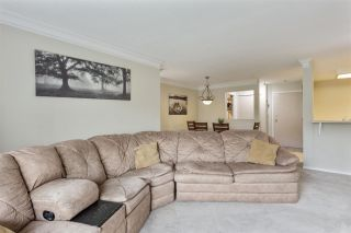 """Photo 10: 208 20881 56 Avenue in Langley: Langley City Condo for sale in """"Robert's Court"""" : MLS®# R2576787"""