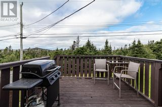 Photo 35: 124 Mallow Drive in Paradise: House for sale : MLS®# 1237512