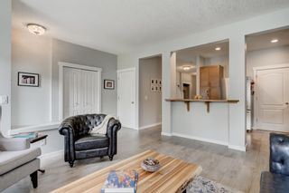 Photo 13: 3831 20 Street SW in Calgary: Garrison Woods Detached for sale : MLS®# A1145108