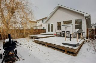 Photo 30: 59 New Brighton Link SE in Calgary: New Brighton Detached for sale : MLS®# A1086384