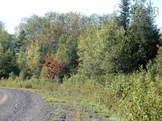 Photo 4: Lot 4 Rod MacKay Road in Central West River: 108-Rural Pictou County Vacant Land for sale (Northern Region)  : MLS®# 202124895