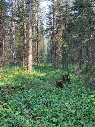 Photo 33: .. None: Bragg Creek Residential Land for sale : MLS®# A1131758