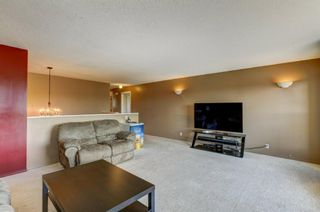 Photo 18: 55 Thornbird Way SE: Airdrie Detached for sale : MLS®# A1114077