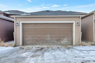 Photo 25: 263 Cornerstone Avenue NE in Calgary: Cornerstone Semi Detached for sale : MLS®# A1069898