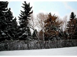 Photo 15: 45 31 Avenue SW in CALGARY: Erlton Residential Detached Single Family for sale (Calgary)  : MLS®# C3596414
