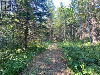 Photo 5: 1450 TERRACE ROAD in Quesnel: Vacant Land for sale : MLS®# R2609503