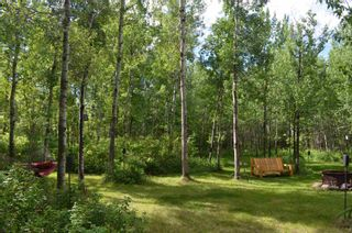Photo 46: 472016 RGE RD 241: Rural Wetaskiwin County House for sale : MLS®# E4242573