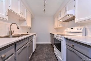 Photo 6: 8 954 Queens Ave in VICTORIA: Vi Central Park Row/Townhouse for sale (Victoria)  : MLS®# 780769