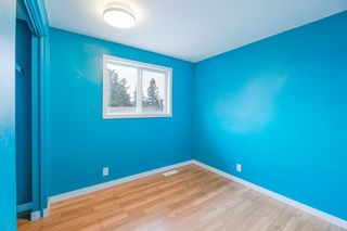 Photo 14: 639 TEMPLESIDE Road NE in Calgary: Temple Detached for sale : MLS®# A1136510