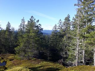 Photo 7: Lot 2 Bold Point Rd in : Isl Quadra Island Land for sale (Islands)  : MLS®# 860487