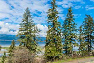 Photo 45: 1561 Northeast 20 Avenue in Salmon Arm: Appleyard House for sale : MLS®# 10133097