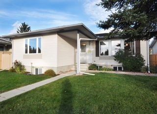 Main Photo: 127 Whitlock Place NE in Calgary: Whitehorn Detached for sale : MLS®# A1151110