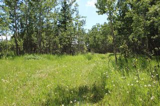 Photo 11: 25255 Bearspaw Place in Rural Rocky View County: Rural Rocky View MD Land for sale : MLS®# A1013795