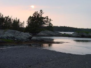 Photo 24: 0 Moshers Island Road in LaHave River: 405-Lunenburg County Vacant Land for sale (South Shore)  : MLS®# 202111805