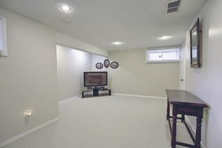 Photo 22: 8230 Saddleridge Drive NE in Calgary: Saddle Ridge Detached for sale : MLS®# A1085120